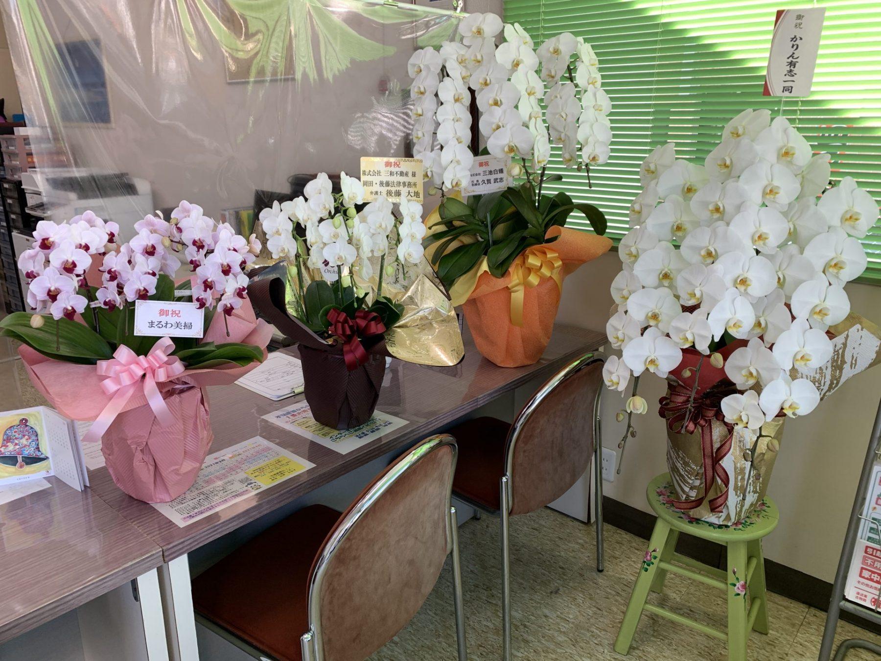 お祝いのお花ありがとうございます。